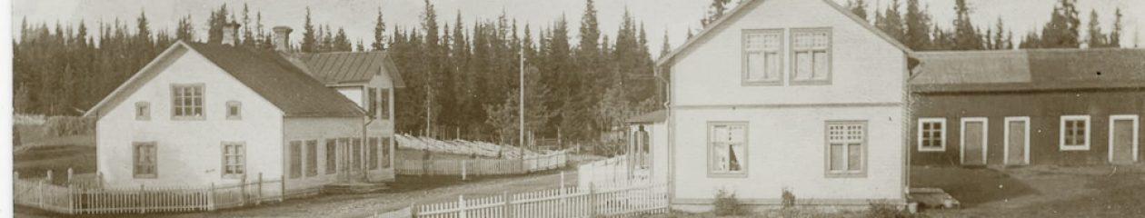 Anor i Jämtland